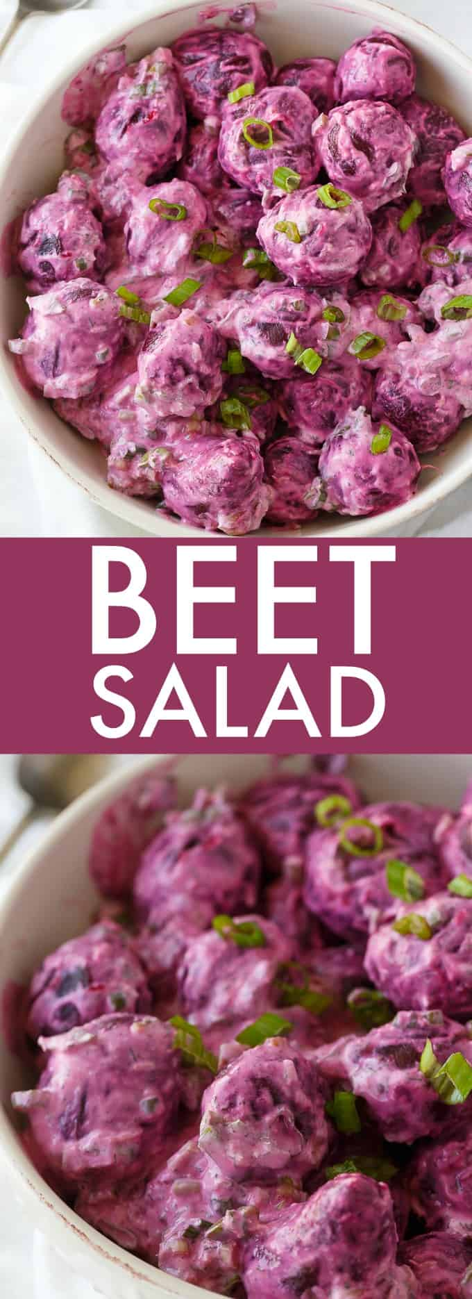 Beet Salad - The most beautiful vegetable salad! These pickled beets and green onions are surrounded by a creamy horseradish dressing and dill for an amazing side dish.