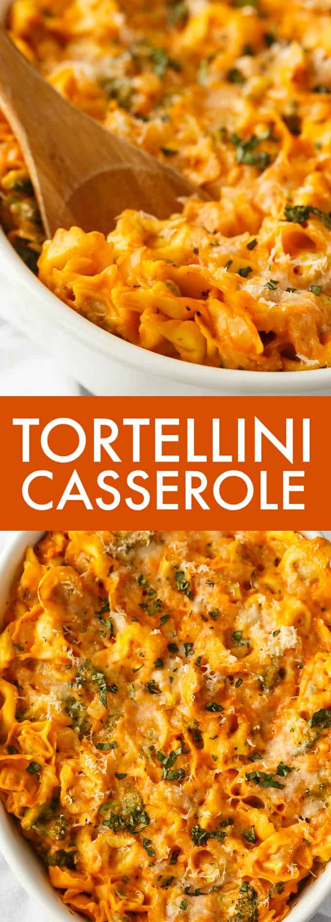 Tortellini Casserole - Hearty and delicious. This easy pasta casserole has beef tortellini smothered in a savory rose sauce, veggies and loads of cheese.