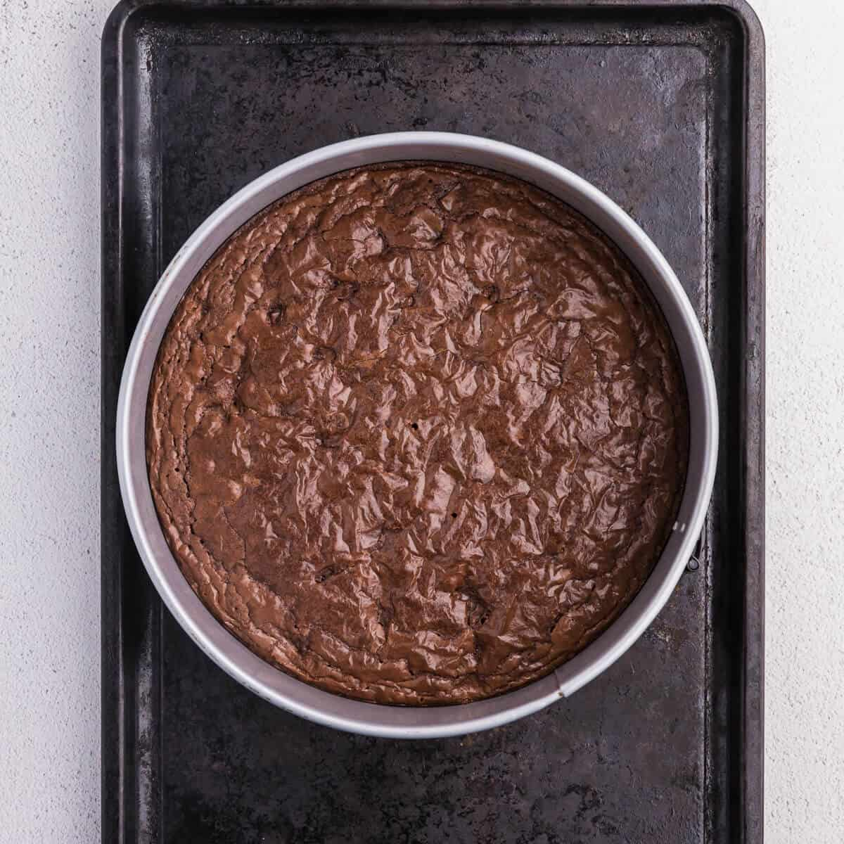 brownie bottom cheesecake baked