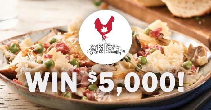 Chicken Farmers Contest