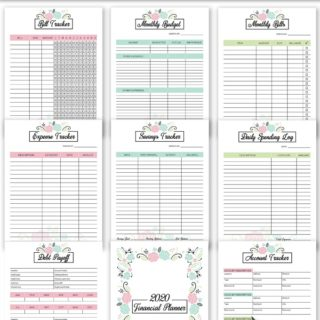 2020 Financial Planner Free Printable - Get organized in 2020 with this FREE 2020 Financial Planner printable! It has worksheets for a monthly budget, daily spending, debt payoff and more.