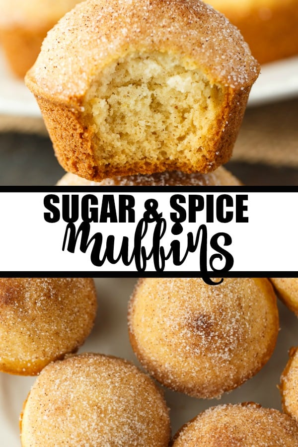 Sugar and Spice Muffins - These cake-like muffins are the perfect treat with a tea or coffee. Enjoy the yummy Snickerdoodle flavors with a cinnamon and sugar topping.