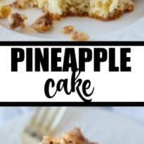 Pineapple Cake - Incredibly moist cake with a hint of sweet pineapple taste. The topping is the BEST part with its buttery, nutty goodness.