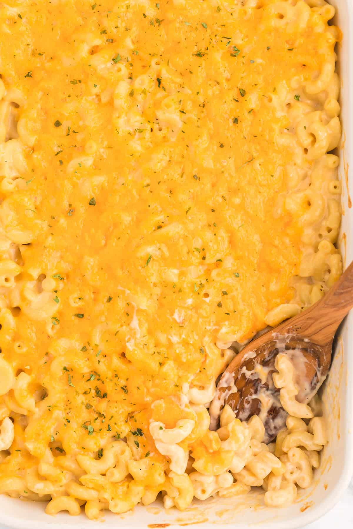 Baked Macaroni and Cheese - This old-fashioned classic recipe is a family favorite dinner and so easy to make. Tender elbow macaroni noodles are enveloped in an ultra creamy homemade cheese sauce and covered with melted cheddar cheese.