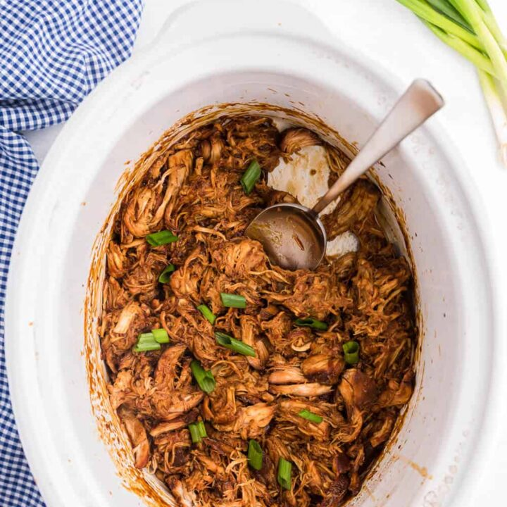 Slow Cooker Asian Chicken